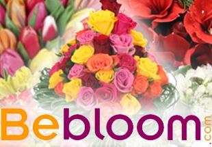 6€ de remise sur bebloom.com avec votre Carte pro